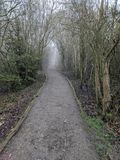 Moat park forest pathway, Maidstone, Kent, Medway, United Kingdom UK. Portrait view of a forest walkway through Moat Park. Spring. Trees sky, branches leaves Royalty Free Stock Image