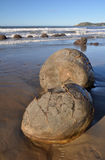 Portrait View of The Moeraki Boulders, New Zealand Royalty Free Stock Photography