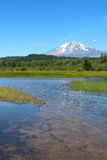Portrait view of Mount Adams from Trout Lake Royalty Free Stock Photo