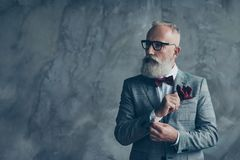 Portrait of virile handsome luxurious trendy stylish intelligent. Smart dreamy thoughtful macho brutal groomed sharp dressed cool classic millionaire fixing Stock Image