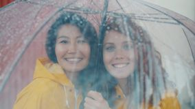 Portrait von Freunden mit Regenmänteln unter einem Schirm im Freien stock video footage
