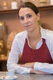 Portrait waitress in cafe Stock Image