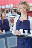 Portrait waitress holding tray coffees. Portrait of waitress holding tray of coffees Stock Image
