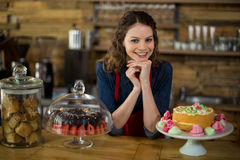 Portrait of waitress standing behind the counter Royalty Free Stock Images