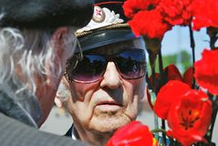 Portrait of a war veteran. Red carnations. Royalty Free Stock Images