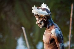 Portrait of a Warrior Asmat tribe in traditional headdress. Stock Images