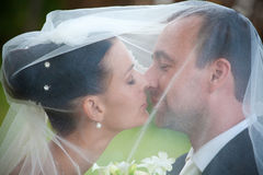 Portrait of wedding couple Royalty Free Stock Image