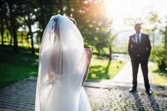 Portrait of wedding couple Stock Image