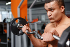 Portrait of weightlifter with barbell in his hands Royalty Free Stock Photo