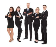 Portrait Of Welldressed Businesspeople Royalty Free Stock Photo