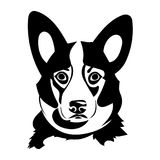 Portrait of a Welsh Corgi. Portrait of a dog of the Welsh Corgi breed. Vector illustration Royalty Free Stock Photos