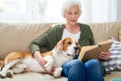 Senior Woman Relaxing at Home with Dog. Portrait of white haired senior woman relaxing at home sitting on couch with pet dog and reading book aloud in modern royalty free stock photography