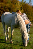 Portrait of a white horse and woman Stock Photos