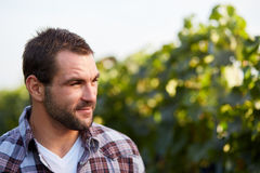 Portrait of winemaker Royalty Free Stock Photo
