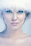 Portrait of winter lady Royalty Free Stock Photography