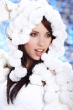 Portrait of a Winter woman Royalty Free Stock Photography