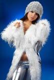 Portrait of a winter woman, fantasy fashion Stock Image