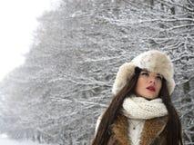 portrait winter woman young Στοκ Φωτογραφίες