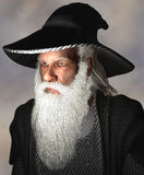 Portrait of a wizard. A portrait of a wizard rendered in 3D royalty free illustration