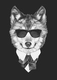 Portrait of Wolf in suit. Hand drawn illustration Stock Photography