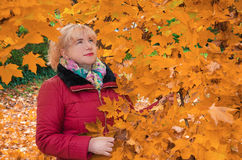 Portrait of a woman at the autumn leaves Royalty Free Stock Photo
