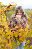 Portrait of woman in autumn vineyard Royalty Free Stock Photography