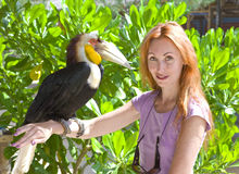 Portrait of woman with bird toucan Stock Images