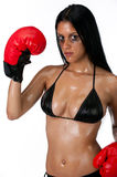 Portrait of woman with boxing Royalty Free Stock Image