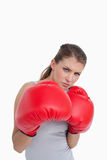 Portrait of a woman boxing. Against a white background Stock Images