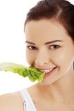 Portrait of a woman eating lettuce leaf Stock Image