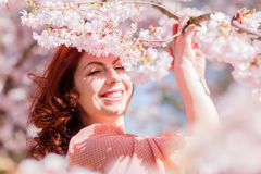 Portrait of a woman in a flowering tree. Portrait of a beautiful woman in a flowering tree Royalty Free Stock Image