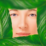 Portrait of woman in a frame of leaves Royalty Free Stock Photography