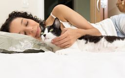 Portrait of woman hand petting black and white cat. Room interior on background. Concept of love to stock images