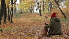 Portrait of woman with her dog in autumn park stock footage