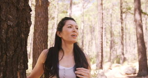 Portrait of woman hiking. On the wood stock video