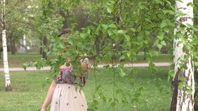 Portrait of a woman near a birch. A young woman walks under the birch branches hanging down stock video