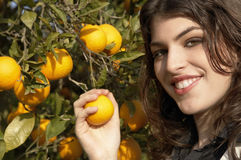 Portrait of Woman Picking Oranges Royalty Free Stock Images