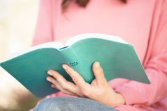 Portrait of a woman reading. Royalty Free Stock Photo