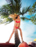 Portrait of woman in red bikini posing near palm. Young pretty hot woman on the tropic island in summer near the sea. Young caucasian woman near ocean beach stock photography
