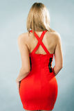 Portrait of woman's back with stylish red dress. On blue background Stock Image