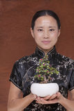 Portrait of woman in traditional clothing holding a small plant in a flower pot, studio shot Stock Photos