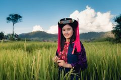 Portrait of Woman Tribal Lisu in Traditional Clothing and Jewelry Costume in Rice Fields., Lifestyle of Hill Tribe Girl in The. North of Thailand., Asian Ethics stock photos