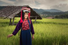 Portrait of woman tribal Lisu in traditional dress and jewelry costume in rice fields., Lifestyle of hill tribe girl in the north. Of Thailand.,Cultural outdoor stock photo