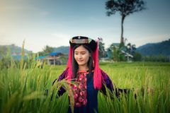 Portrait of woman tribal Lisu in traditional dress and jewelry costume in rice fields., Lifestyle of hill tribe girl in the north stock photo