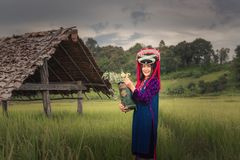 Portrait of woman tribal Lisu in traditional dress and jewelry costume in rice fields., Lifestyle of hill tribe girl in the north. Of Thailand.,Cultural outdoor stock image