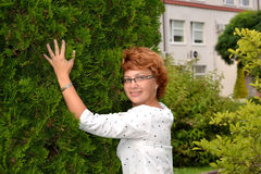 Portrait of the woman wearing spectacles about a thuja Stock Photography