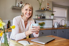 Portrait Of Woman Working From Home On Laptop In Apartment Royalty Free Stock Photo