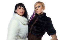 Portrait of women in fake fur coats Stock Photo