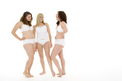 Portrait Of Women In Their Underwear Royalty Free Stock Image