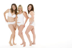 Portrait Of Women In Their Underwear Stock Images